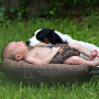 Little newborn baby with his puppy dog
