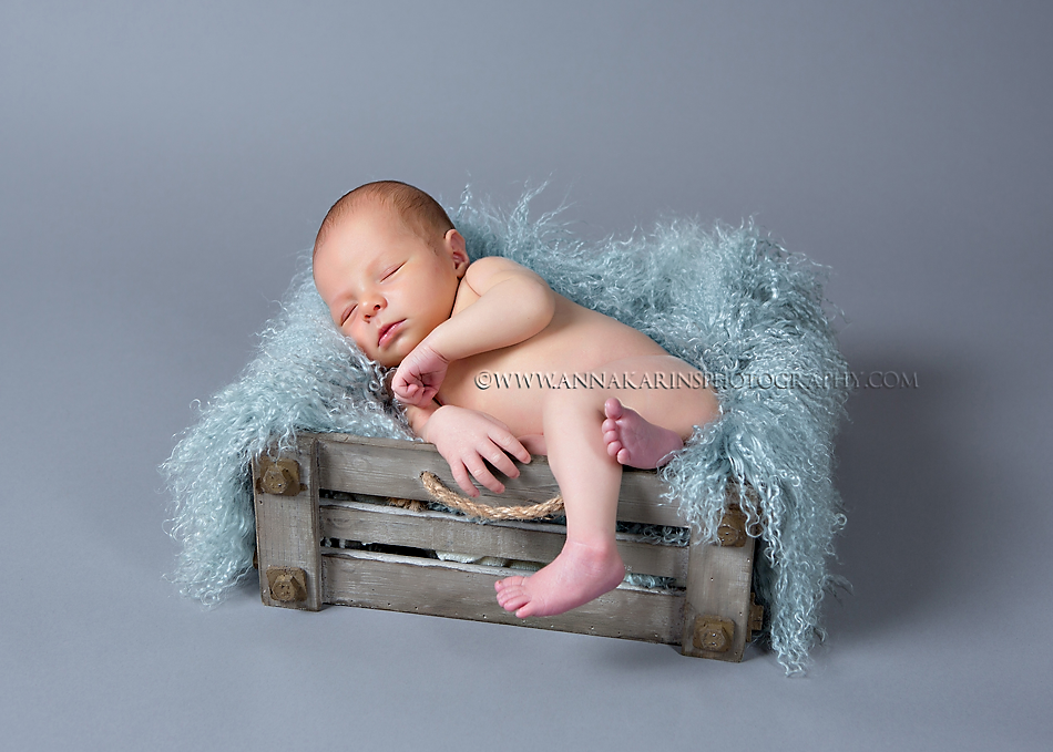 beautiful newborn baby boy curled up in basket on mongolian fur